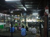 We go to see a Thai Boxing match! Interesting stadium...: by sglass, Views[120]
