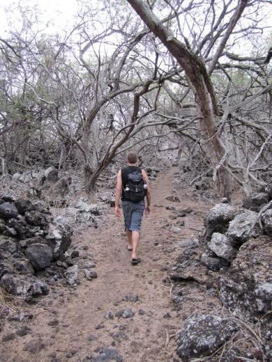 The trail back from Honomalino