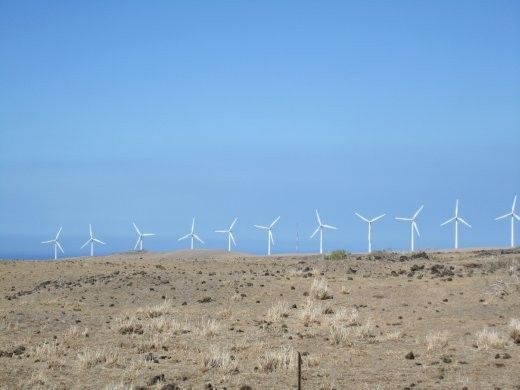 Windmills at South point, they actually create energy for the island from wind!