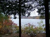side yard looking out on lake: by shantitour, Views[284]