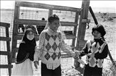 """Farah [Left] , Jammal [Center], & Wasim [Right] play """"capture the animal"""" outside the American Canyon Farm in Vallejo, California, as sacrifices continue inside on October 15th, 2013. Farah wears a hijab, a headscarf, worn by Muslim women as a symbol of modesty. : by shawnharris, Views[273]"""