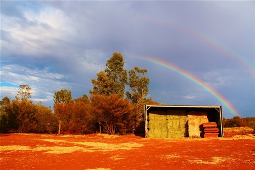 It's extremely rare to witness a rainbow in any desert due to the lack of rainfall. I was lucky enough to see this vibrancy of colour appear in contrast to the grey sky after a sunshower, shining brightly over the camel farm.