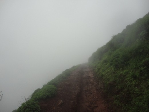 Before reaching the top, the final 400mtrs, the trail becomes very narrow in such a way that only a single person can pass.