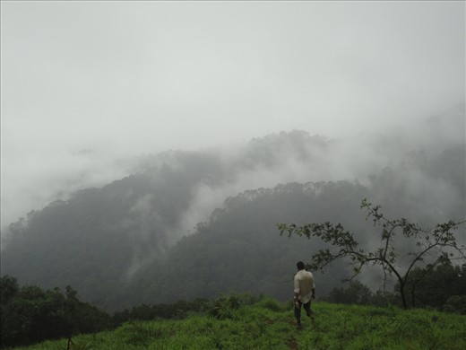 The beautiful surrounding hills of Kodachadri Peak drenched in fog and mist.