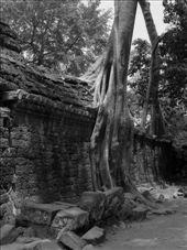 Tha Phrom in Black & White: by shockalotti, Views[240]