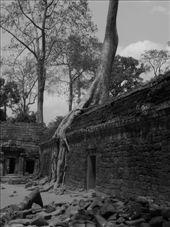Tha Phrom: by shockalotti, Views[321]