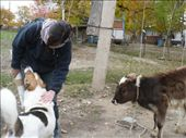 Sylvie and our welcoming party in one of the villages in Vanj: by shrummer16, Views[300]