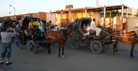 Traffic jam! (en route to Edfu Temple on June 21st, Father's Day)