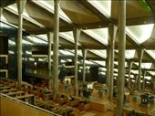I don't know what I was expecting (perhaps something a little more ancient-looking?), but the library was QUITE modern: by shrummer16, Views[185]