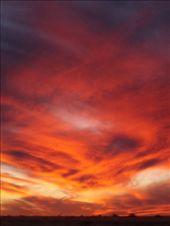 by shrummer16, Views[382]