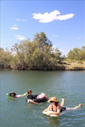Dalhouse Springs - a mere 37 degrees warm - same as the air temp.  Not at all refreshing but fun all the same.: by siblysgotroppo, Views[304]