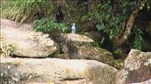 Bokor National Park : by sierrayla-1, Views[154]