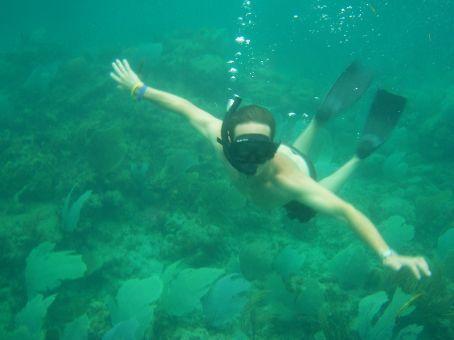 Snorkelling in Turtle bay