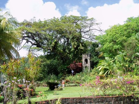 Plantation gardens, St Kitts