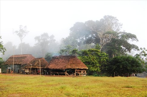 Juyuintza tribal peoples houses in the Amazon
