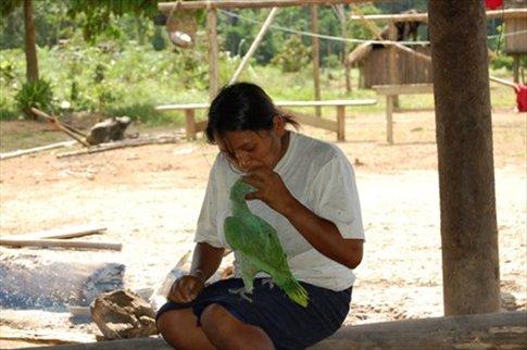 Monica feeding a bird moth to mouth at Juyuintza tribe- Ecuadorian Amazon