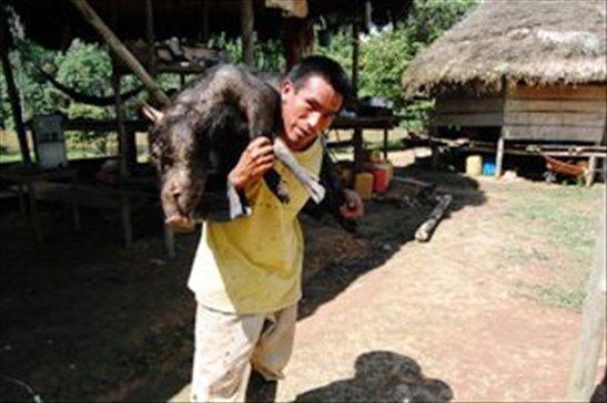 Marco carrying lunch- Juyuintza tribe- Ecuadorian Amazon