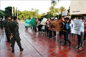 Protest march for animal liberation in Cali: by simonefrancis, Views[358]