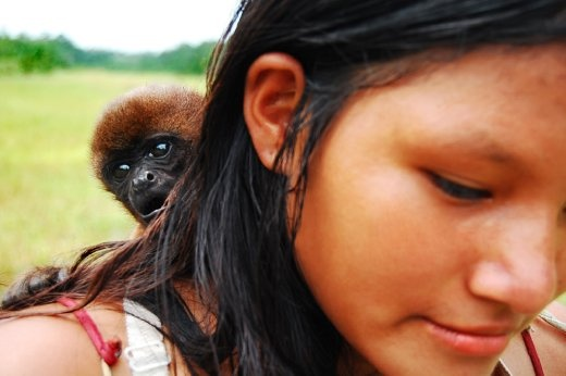 Reveals the domestication of moneys within an Ecuadorian Amazon community. Monkeys are tied to poles or sold to the nearby cities. The monkeys face reveals his terror.