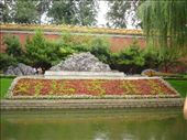 patriotic flower gardens: by simsy, Views[126]
