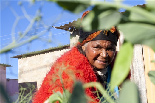 Florence Mtwalo picks some peas for her family's evening meal, Grahamstown, East