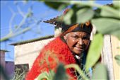 Florence Mtwalo picks some peas for her family's evening meal, Grahamstown, East: by siyakhula, Views[339]