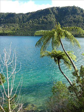 The Blue Lake near Rotorua, being exactly that!!