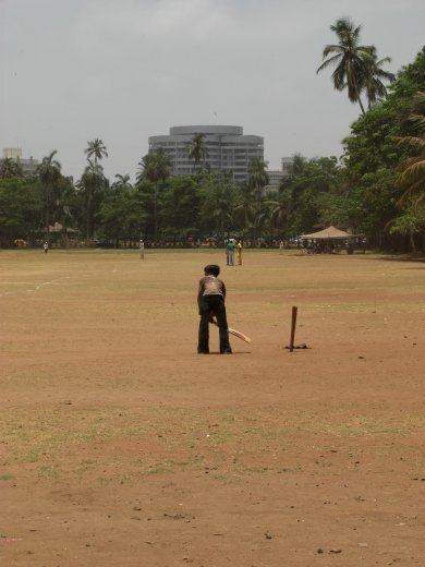 Park in the middle of town - about 5 cricket matches were going on