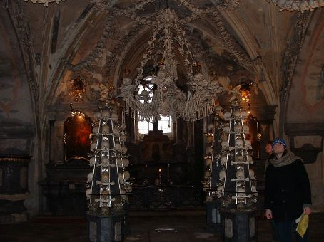 The chandelier made of bones. It contains at least one of every bone found in the human body.