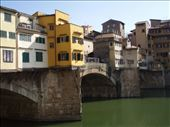 River in Florence.  Note the buildings hanging over the river.: by smartin1978, Views[516]