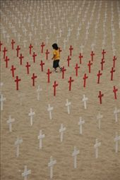 On a Sunday afternoon I decided to take a walk on the Santa Monica beach and find out this Memorial to the dead from wars. What was more astonishing was that minewhile the families were depositing flowers, this little kid was happily playing between the crosses as if nothing was going on.: by smilecass, Views[231]