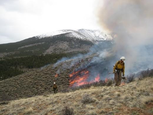 Controlled burn in Colorado - 2013.