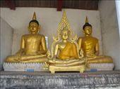 Buddha statues at Wat Chedi Luang, Chiang Mai: by solo_rhodes, Views[225]