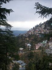 Mcleod Ganj: by sophsossig, Views[372]