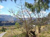 by southamerica, Views[105]