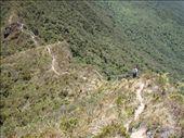 by southamerica, Views[118]