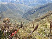 by southamerica, Views[130]