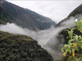by southamerica, Views[87]
