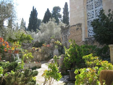 Ein Kerem garden. Points gained from Ein Kerem's change of pace from neighboring Jerusalem were lost when the fruit I purchased was way overpriced.