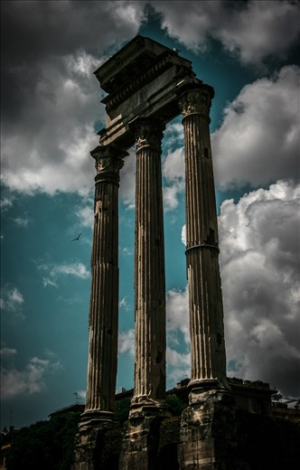 The photo has been shot during my Rome trip in the ancient city. The columns are rising with all their history to the bright sky and the free bird accompany to them.