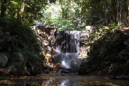 Darwin botanic parc