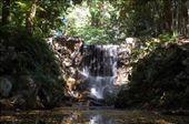 Darwin botanic parc: by steph, Views[346]