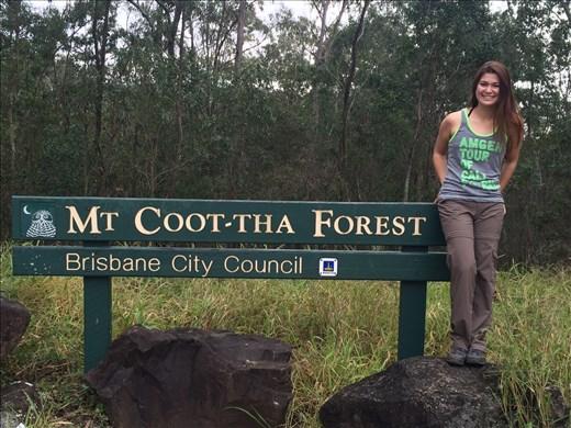 Bushwalking Mt Coot-tha