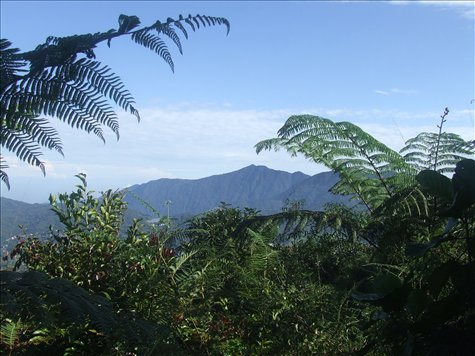 A view of Gunung Irau from Gunung Berembam.
