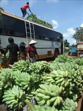 Going bananas on the way back to Pakse from Tad Lo.: by steve_and_emma, Views[192]