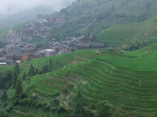 Dragon's Backbone Rice terraces.