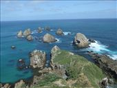 Nugget Point.: by steve_and_emma, Views[186]