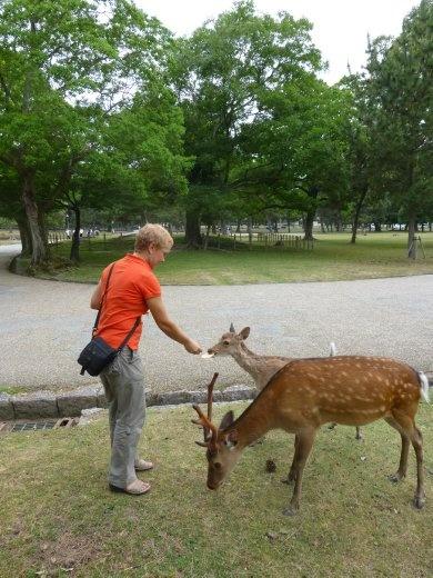 Oh deer Emma, stop feeding the wildlife!