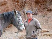 Steve the horse whisperer!: by steve_and_emma, Views[289]