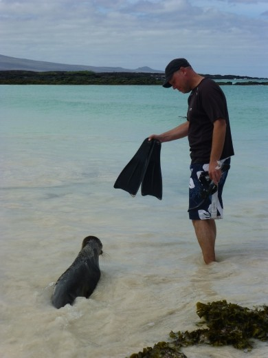 This pup thought I was a sea lion too, well I did have flippers!